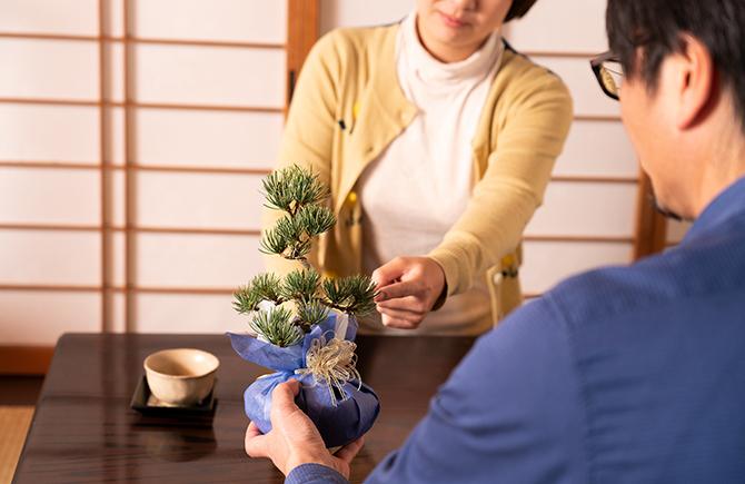 ギフト盆栽