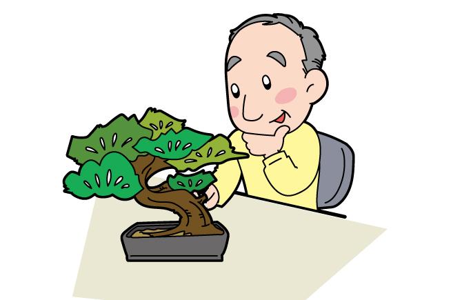 波平さんと盆栽