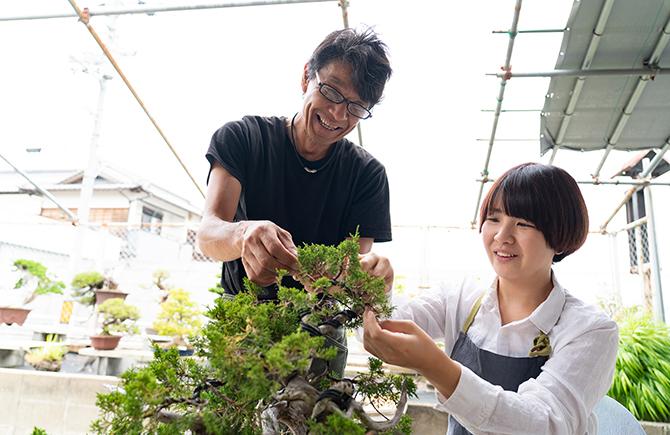 盆栽の指導