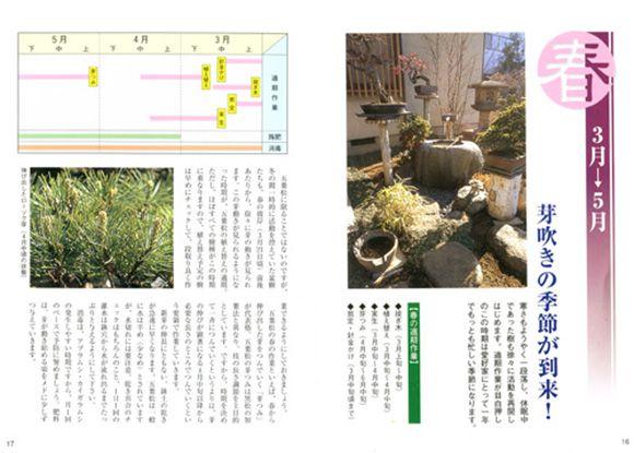 五葉松の育て方書籍 春ページ
