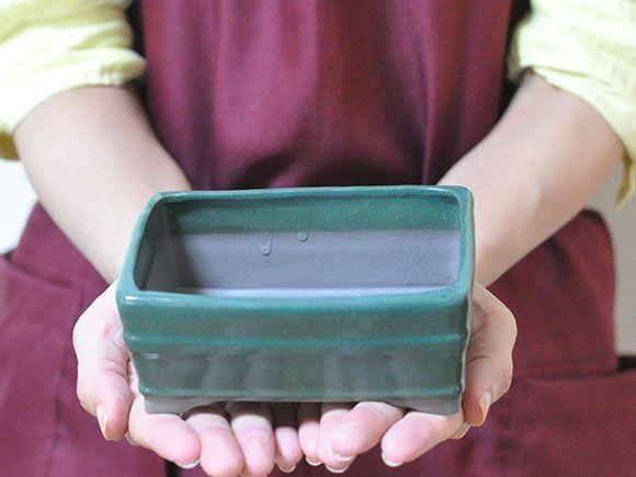【瀬戸焼】4号鉢 緑長方