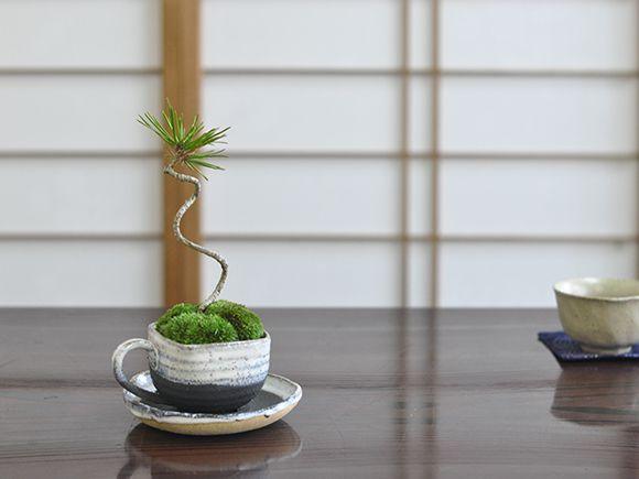 黒松コーヒーカップ