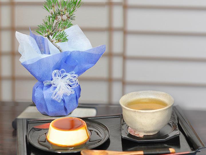 質実剛健の松盆栽とケーキセット