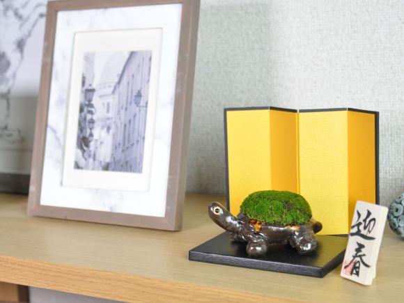 かめの苔盆栽迎春セット 【屏風、敷板、木札付き】