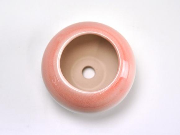 ピンク3.5号 鉢幅約11cm×高さ約7cm