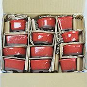 赤釉小鉢 12点セット 鉢幅約3〜4cm×高さ約3〜4cm