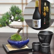 父の日 盆栽ギフト 五葉松と地酒、酒器のセット 育て方冊子&肥料付き【送料無料】
