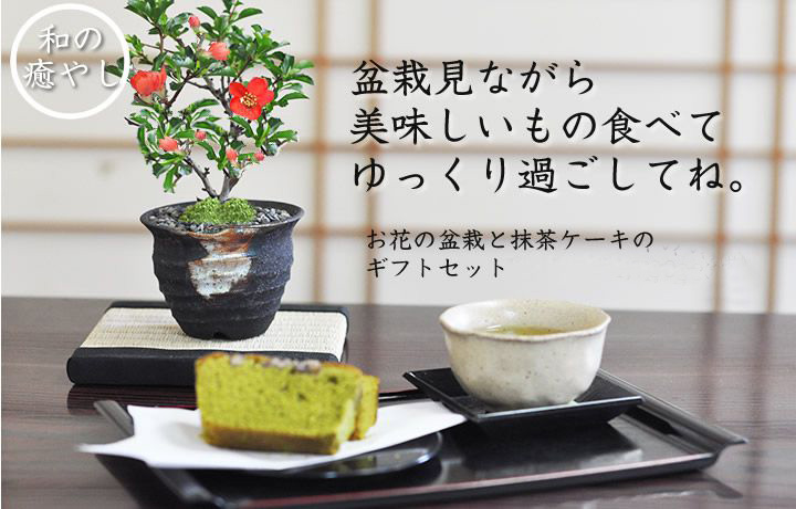 お花の盆栽とお菓子セット