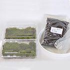 二種類の苔玉作りセット